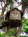 tree-house-5264768